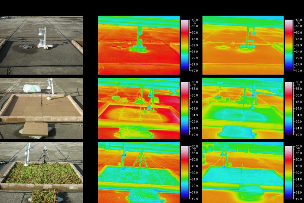 無処理・保水基盤単体・保水基盤+セダム緑化の比較